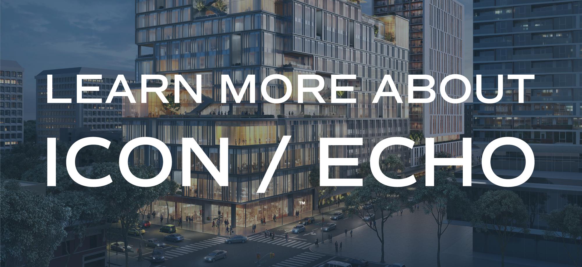 Project Spotlight: Icon/Echo